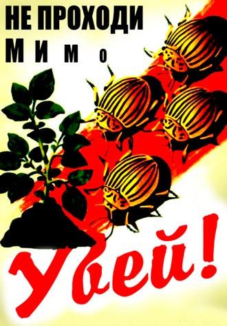 Ночью в Киеве горел радиорынок - Цензор.НЕТ 8230