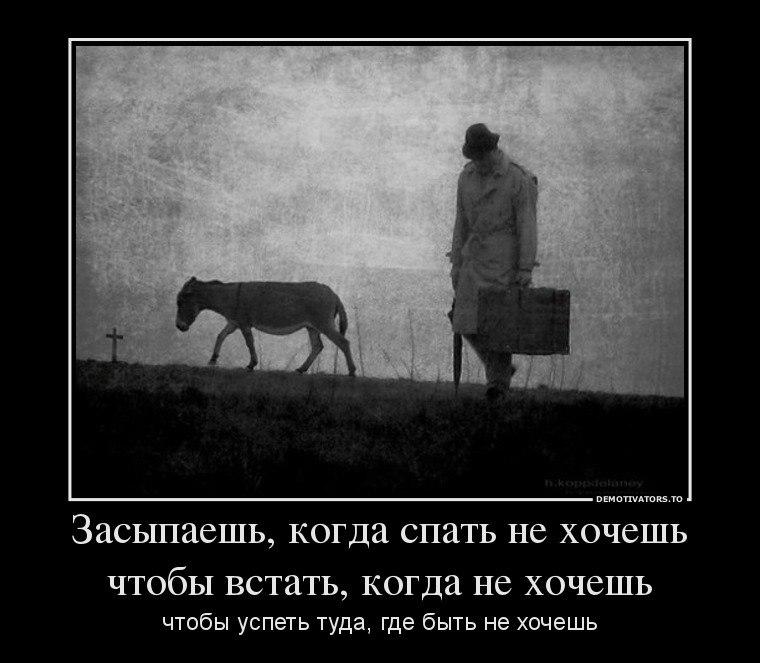 Руку русский роман онлайн смотреть бесплатно прямой эфир сейчас которая наиболее полно