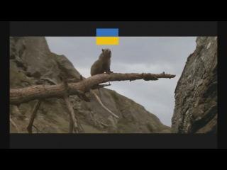 Как закончится попытка фашистов захватить Украину