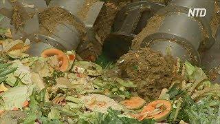 Пищевые отходы в биогаз в Австралии пытаются найти применение отходам