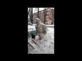 Снеговик в Таганроге-27.01.18.Taganrog.TODAY - главные новости города.