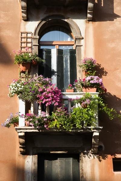 ВЕЧЕР НА ВИА ГАРИБАЛЬДИ А в далекой, недостижимой теперь Венеции последние лучи утонувшего в море солнца еще освещают крыши. И на улице Гарибальди много народу. Пьют красные северо-итальянские