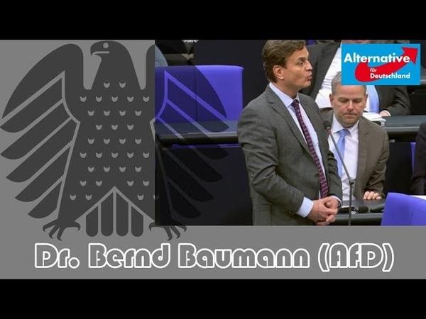 😉 Dr. Bernd Baumann (AfD) an Merkel Was ist aus ihrer nationalen Kraftanstrengung geworden