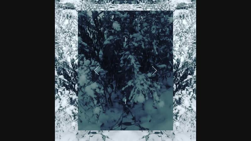 Капли крови на снегу- Ледяные розы, От судьбы не убежишь, Тут излишни слёзы...