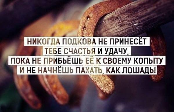 http://cs543106.vk.me/v543106018/3e3c/UeudlfSyy6Q.jpg