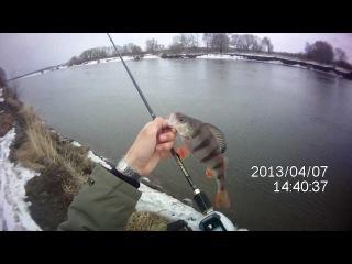 Москва-река Окунь на спиннинг(кастинг)