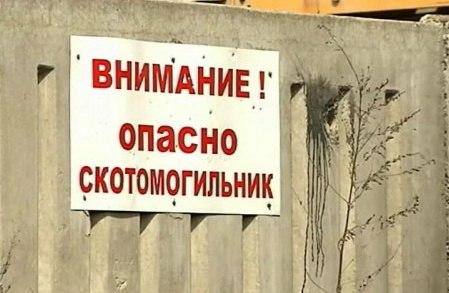 В Новочеркасске ветеринарные специалисты законсервировали скотомогильник и яму Беккари