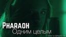 PHARAOH Одним целым cover by @fesch6