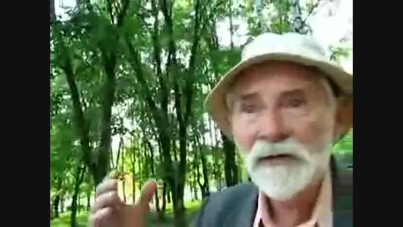 Дмитрий Алексеевич из Вологды.