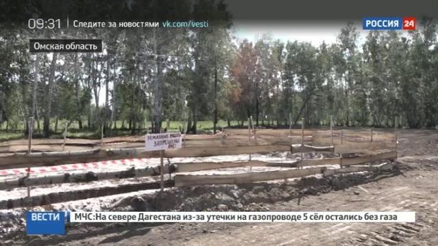 Новости на Россия 24 • В Омской области массово режут свиней из-за африканской чумы