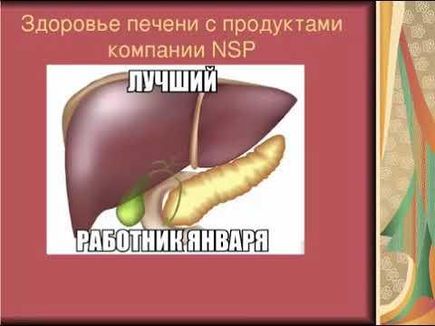 Печень– важнейший орган человека. Врач, к.м.н., нутрициолог Антилевский В.