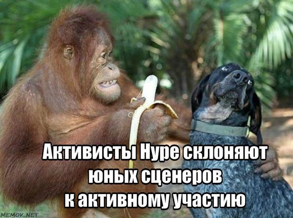 https://pp.userapi.com/c849520/v849520351/d6e67/_f6UEq_YI8c.jpg
