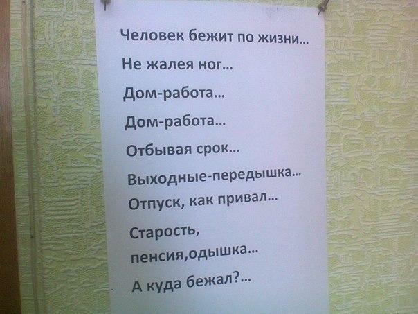 Фото №456254564 со страницы Мадины Турсуновой