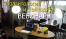 Тенториум и Паразиты. Вебинар Елена Мельник