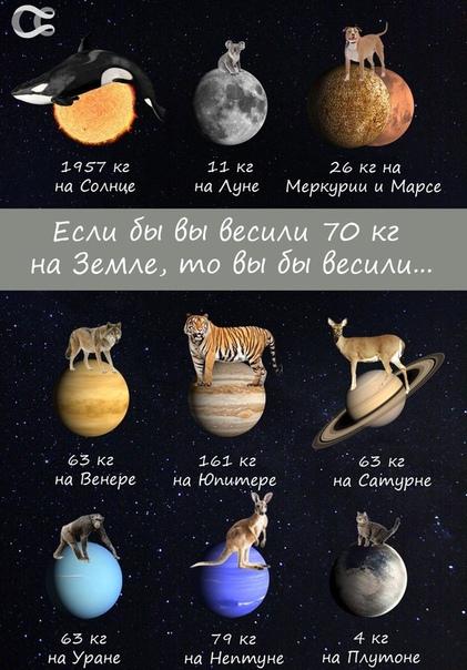 Сколько бы вы весили на других небесных телах Солнечной системы