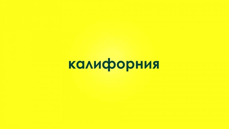 """промо ролик для финансовой компании _""""осипов финанс_"""""""