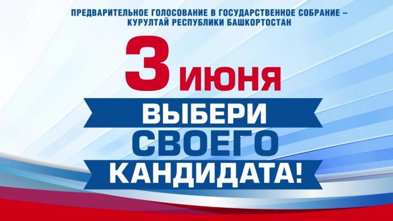 Предварительное голосование ЕР 2018