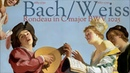 Bach Weiss - Duet for Viola Lute -