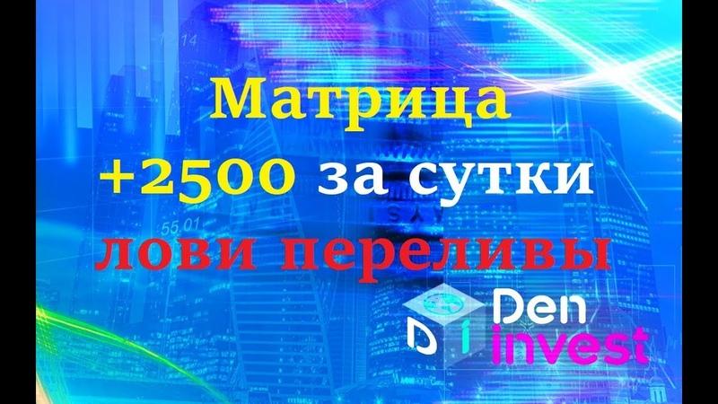 Moneystep.club матрица результат за сутки обзор отзывы регистрация