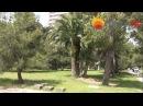 Jamtour ОП Курорт Пицунда (Пицунда, Абхазия) столовая