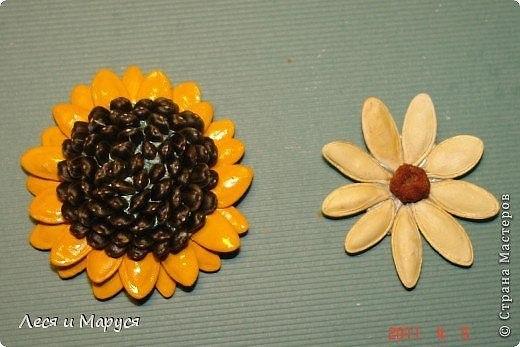 Объемные поделки из семян