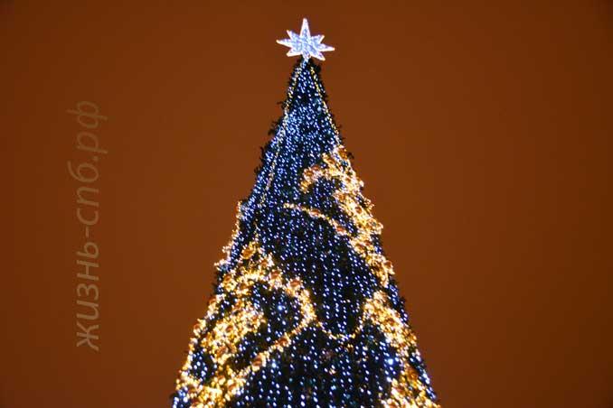 Новогодняя елка на Дворцовой Площади Петербурга, декабрь 2018