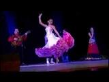 Сольный танец под песню Ту балвал в программе ансамбля Русска рома. 2013 год.