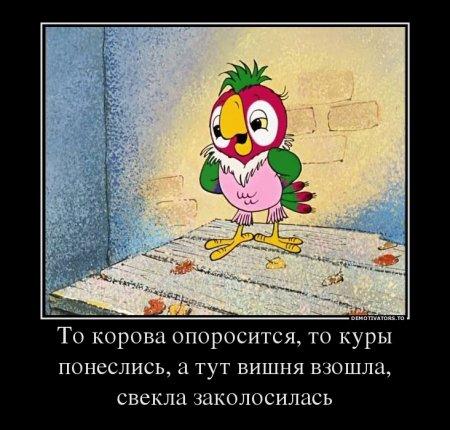 советские мультфильмы смотреть онлайн бесплатно 2014 2015