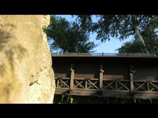"""Парк """"Лога"""", водоём возле летнего кафе, 23.07.2018"""