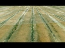 Huge Ancient Irrigation System of South Africa, a Gary Schoenung Documentary, unknown Africa