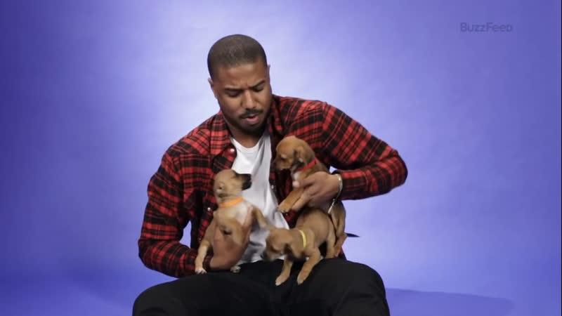 Puppies 🐶