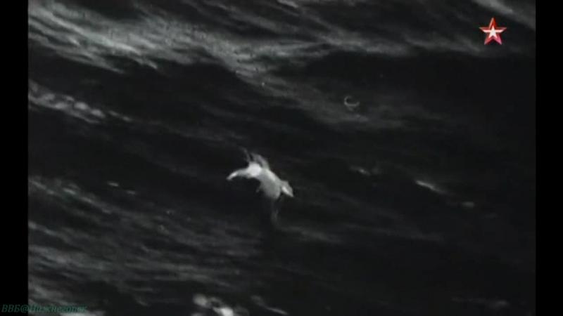 Неизвестная война 12 Битва на море Документальный история ВОВ 1978