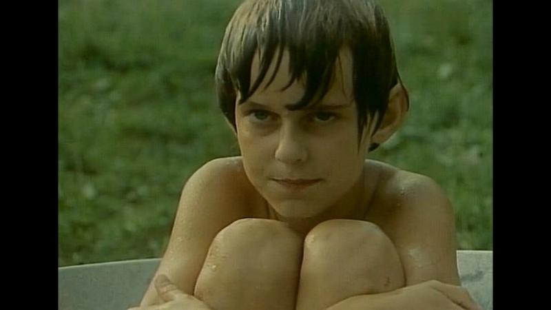 Проделки близнецов / Dziewczyna I Chlopak (1978, Польша) польский язык, 6 серия из 6