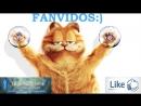 Самые смешные видео .Лучшие приколы ПОД МУЗЫКУ Fanvidos (1)