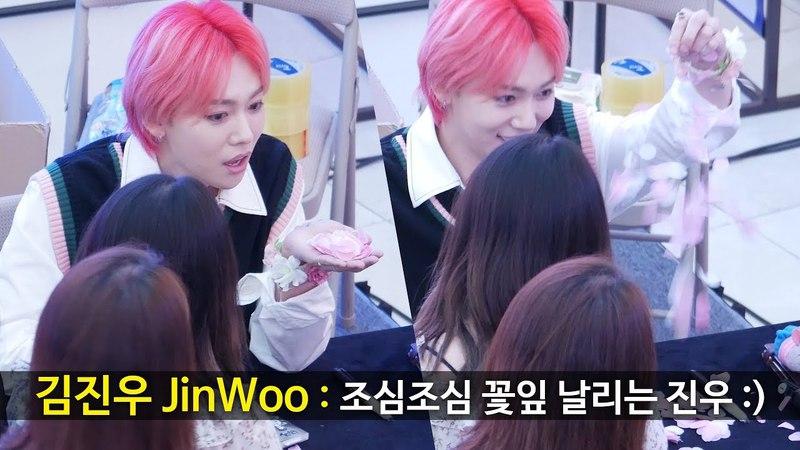 조심조심 꽃잎 날리는 김진우 JinWoo, petal : 위너 WINNER 팬싸인회 Fansign Event : 고양 스타필드
