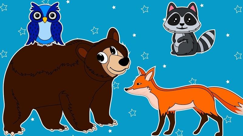Как Нарисовать Лесных Животных для Детей. Все Серии Подряд. Учимся Рисовать Медведя Сову Енота Лису