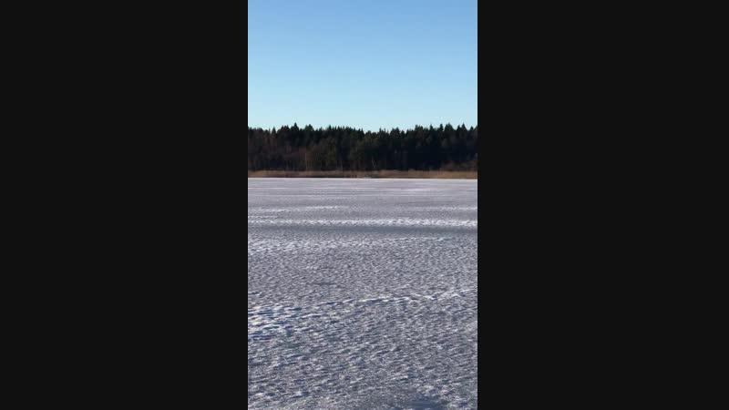 Lillsjön, Kungsängen 20 januari 2019