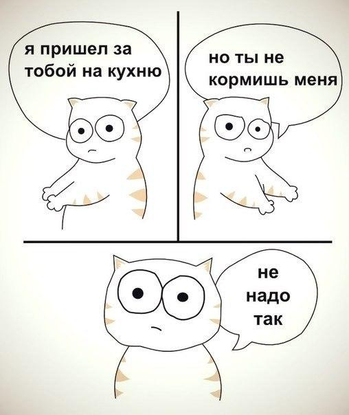 http://cs620116.vk.me/v620116513/c23b/vZy6MKKo1yQ.jpg
