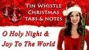 Christmas Music For Tin Whistle - O Holy Night Joy To The World