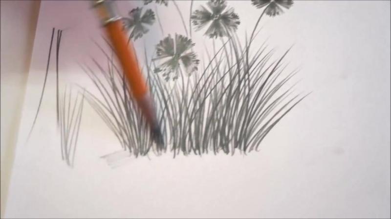 Как нарисовать полевые ЦВЕТЫ и ТРАВУ простым карандашом. Основы построения букета