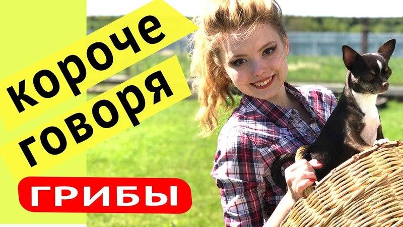 Короче Говоря Грибы | Смешная попытка сделать жульен из курицы и грибов. » Freewka.com - Смотреть онлайн в хорощем качестве