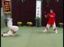 Яо Ченжун. Техника Саньшоу в Ицюань.