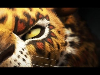 Король сафари - Дублированный Трейлер (Khumba) 2013 Мультфильм; ЮАР; бюджет $20 000 000