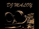 DJ LBR vs Davis Redfield ft Funkwell - Shake Party (DJ maloy mash up)