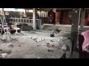 В селе Петровка Красногвардейского района двое подростков разгромили ночной клуб «Галерея»