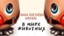 Анна Плетнёва Винтаж В мире животных