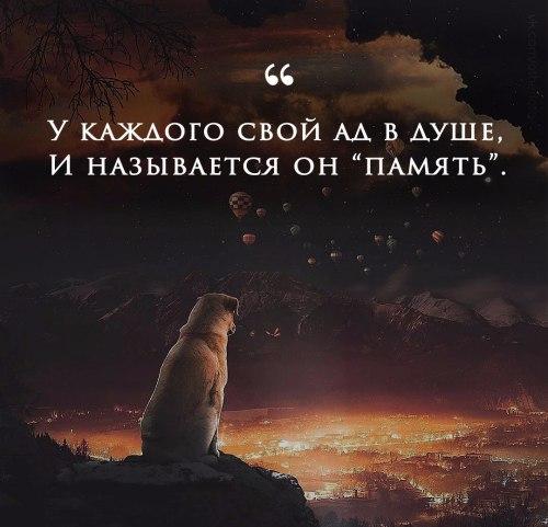 Фото №456254713 со страницы Алены Стахановой