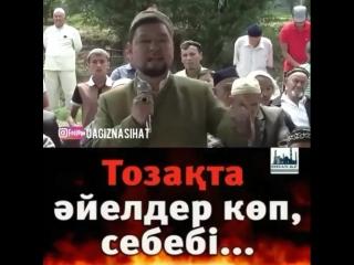Тоза та йелдер к п себеб стаз Батырбек Базарбек лы (720p).mp4