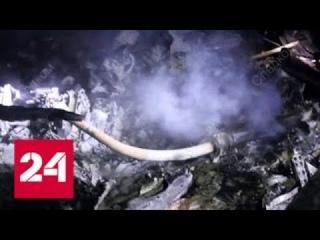 При крушении вертолета в Костромской области погиб заместитель генпрокурора РФ - Россия 24
