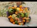 Фруктовый букет Весенний цитрус